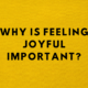 Why is feeling joyful important?